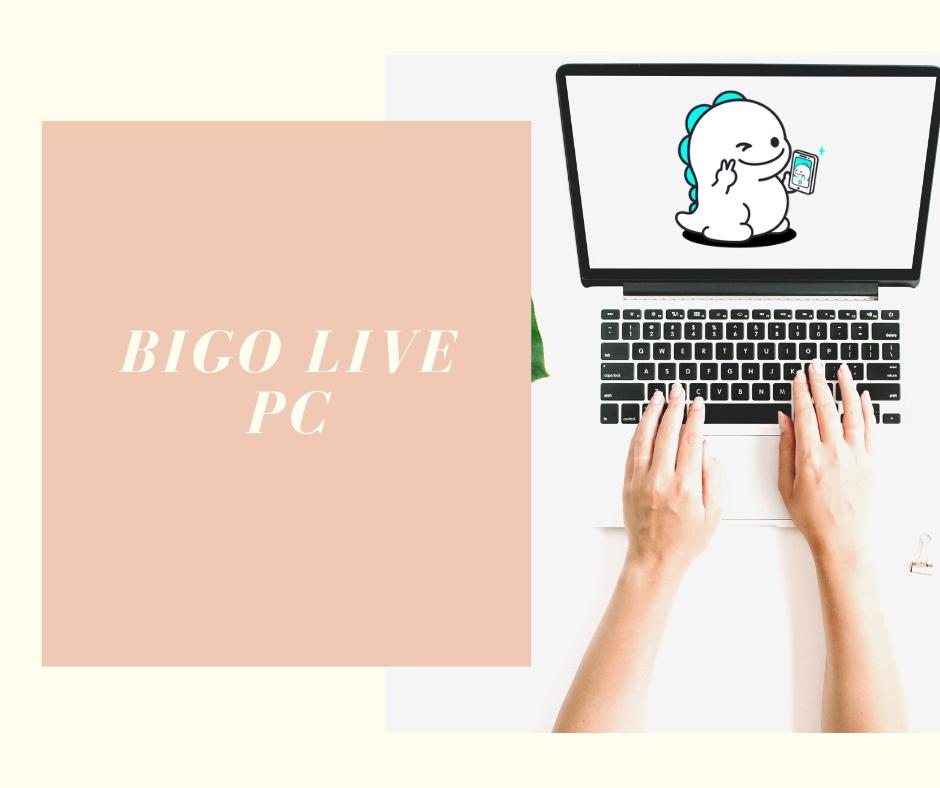 BIGO LIVE PC